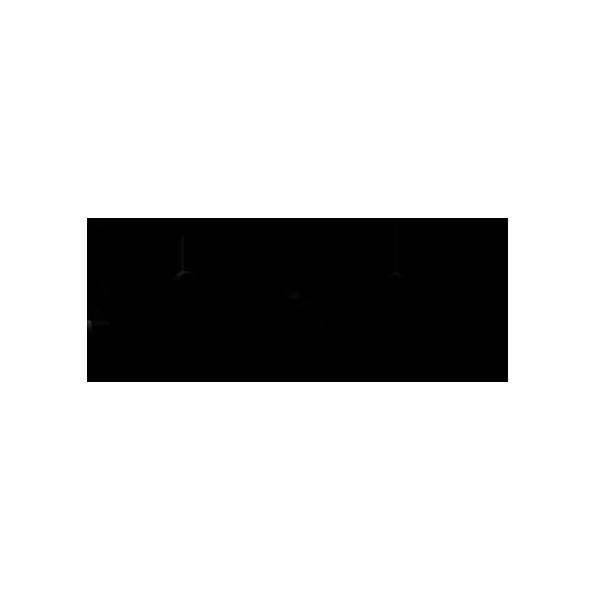 logo_so_pam